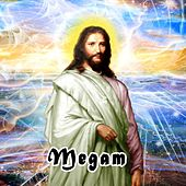 Megam by Various Artists