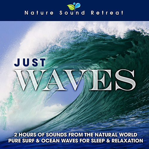 Just Waves: 2 Hours of Sounds from the Natural World (Pure Surf & Ocean Waves for Sleep & Relaxation) by Nature Sound Retreat