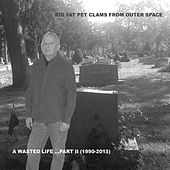 A Wasted Life, Part II: 1990-2013 by The Big Fat Pet Clams From Outer Space