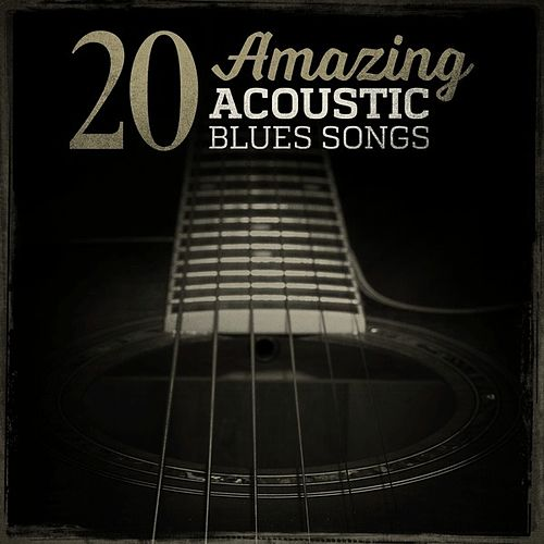20 Amazing Acoustic Blues Songs by Various Artists