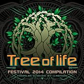 Tree Of Life Festival 2014 - EP by Various Artists