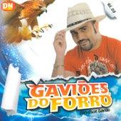 Gaviões do Forró, Vol. 8 de Gaviões do Forró