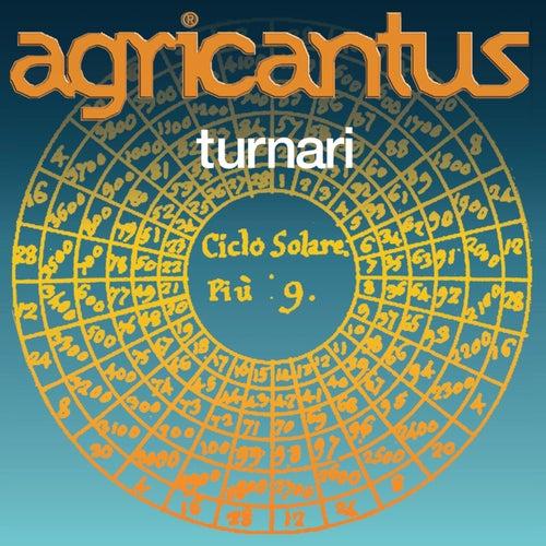 Turnari by Agricantus