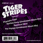 Safari by Tiger Stripes