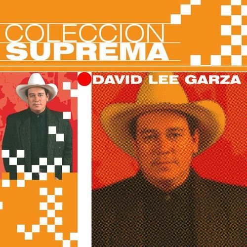 Coleccion Suprema de David Lee Garza