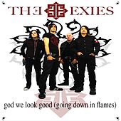 God We Look Good by The Exies