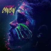 Loose Canon Vol. 2 by Canon
