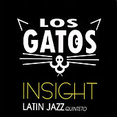 Insight de Los Gatos