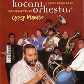 Gypsy mambo de Kocani Orkestar