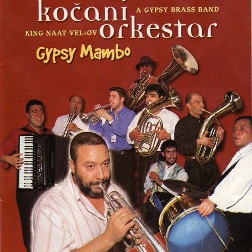 Gypsy Mambo by Kocani Orkestar