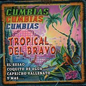 Cumbias von Tropical Del Bravo