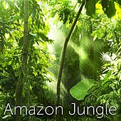 Amazon Jungle by Tmsoft's White Noise Sleep Sounds