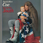 Son of the South de David Allan Coe