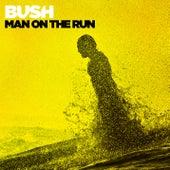 Man On the Run by Bush