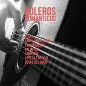 Boleros Romanticos: Nunca, Amor, Amor, Amor, Amor Perdido, Palmeros, Amor Mio, Vereda Tropical, Cosas del Amor de Various Artists
