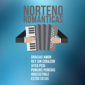 Norteno Romanticas: Gracias Amor, Rey Sin Corazon, Ayer Pedi, Punchis Punchis, Irresistible, Estos Celos by Various Artists