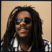 Dennis Brown Hits After Hits the Legend Continues by Dennis Brown