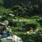 Lily-O de Samamidon