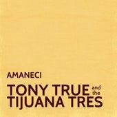 Amaneci de Tony True and the Tijuana Tres