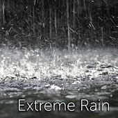 Extreme Rain by Tmsoft's White Noise Sleep Sounds