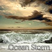Ocean Storm by Tmsoft's White Noise Sleep Sounds