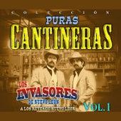 Puras Cantineras, Vol. 1 de Various Artists