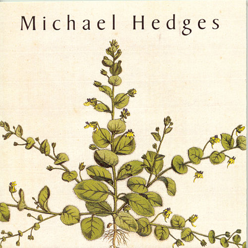 Taproot by Michael Hedges