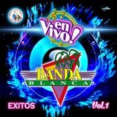 Exitos Vol. 1. Música de Guatemala para los Latinos (En Vivo) de Banda Blanca
