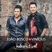 Indescritível de João Bosco & Vinícius