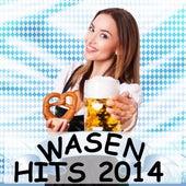 Wasenhits 2014 von Various Artists
