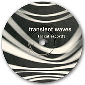 Born With a Body and Fucked in the Head de transient waves