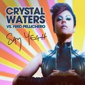 Say Yeah von Crystal Waters