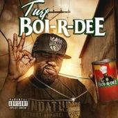 Turf Boi-R-Dee von Various Artists