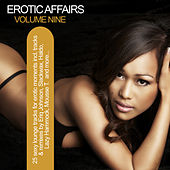 Erotic Affairs, Vol. 9 - Sexy Lounge Tracks For Erotic Moments by Various Artists