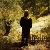 Hello, My Name Is de John Howard