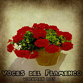 Voces del Flamenco Vol. 2 by Various Artists