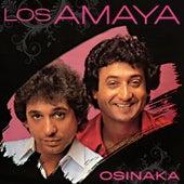 Osinaka de Los Amaya