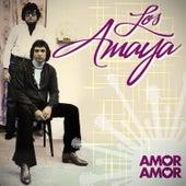 Amor, Amor de Los Amaya