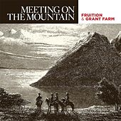 Meeting On the Mountain by Fruition