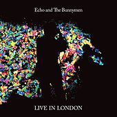 Live in London 2014 di Echo and the Bunnymen