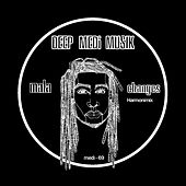 Changes (James Blake Harmonimix) by Mala