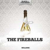 Bulldog von The Fireballs