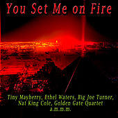 You Set Me on Fire by Various Artists