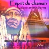 Esprit du chaman: musique amérindienne: musique en continu sans interruption by Niall