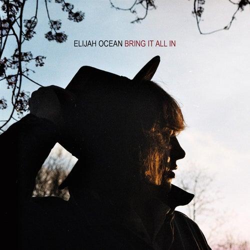 Bring It All In by Elijah Ocean