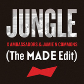 Jungle by X Ambassadors