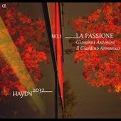 Haydn 2032, Vol. 1 by Il Giardino Armonico