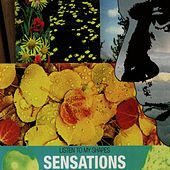 Listen To My Shapes by Sensations