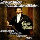 Johann Strauss, Los Grandes de la Música Clásica by Various Artists