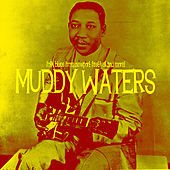 Folk Blues from Newport Festival and More! de Muddy Waters